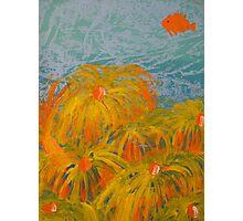 Yellow Coral Photographic Print