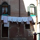 House in Venice by Namdres