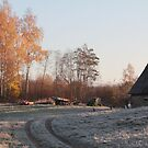 First frost in rural place by Antanas