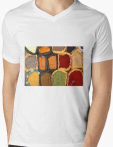 Spices at the Market Mens V-Neck T-Shirt
