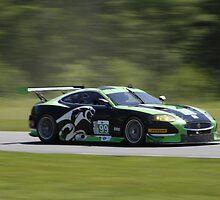 ALMS 2011 LRP Jaguar by gtexpert