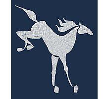 White Horse Mosaic.  Photographic Print