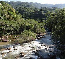 Rivers, mountains, jungle  by Bernhard Matejka