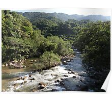 Rivers, mountains, jungle  Poster