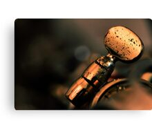 Just a blue note... Canvas Print