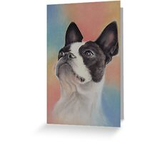 My Sweet Boston Terrier, in pastels Greeting Card