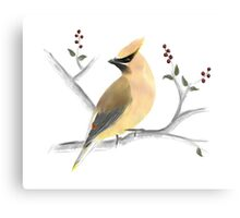 Watercolor Cedar Waxwing Canvas Print