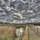 Wetlands Walkway - Bay Area Park - Texas by tiptoncreative