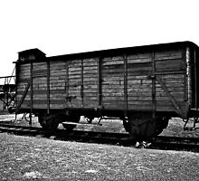 Carriage at Auschwitz by Wintermute69