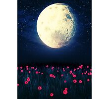 Moon over Grass Field 4 Photographic Print