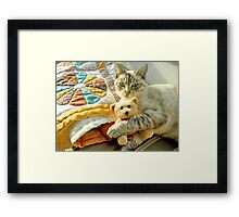 Could You Be Any Cuter? Framed Print