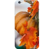 decorative pumpkins iPhone Case/Skin