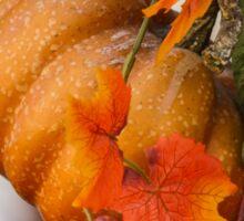 decorative pumpkins Sticker