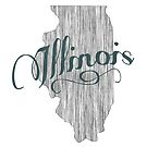 Illinois State Typography by surgedesigns