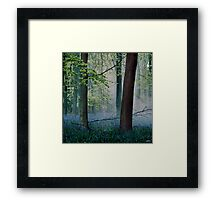 Heath Robinson Framed Print