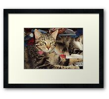 Queen Zoe Framed Print