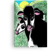 Steve's Cows Canvas Print