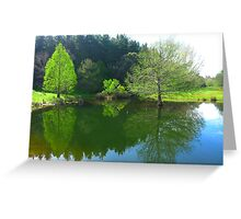 The Duck Pond - Robert Mann Greeting Card