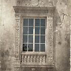 Window by Rozalia Toth