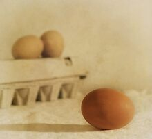 three eggs and a egg box by Priska Wettstein