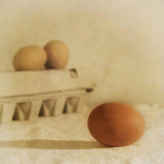 three eggs and a egg box by Priska Wettstein