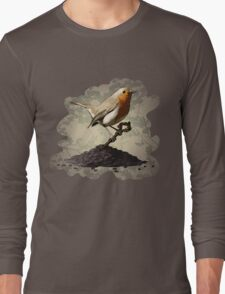 Mr. Robin Finds the Key Long Sleeve T-Shirt