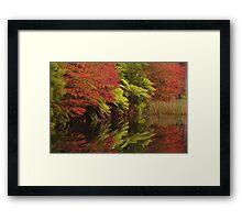 Garden Walk (10) Framed Print