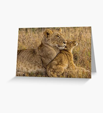 Lion Baby with Mother Greeting Card