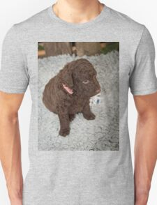 Awesome Curly Coated Retriever T-Shirt