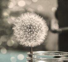 Dandelion in a Jar by Virginia Sanderson