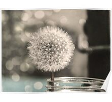 Dandelion in a Jar Poster