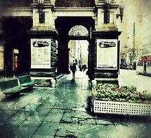 Town Hall Arch by sebastian