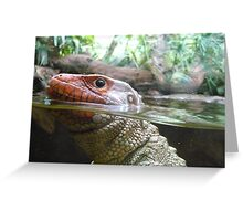 Reptile Close Up Greeting Card