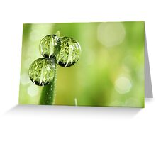 A Lawn in a Blade of Grass Greeting Card