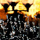 Fountain in the City  by Ben Case