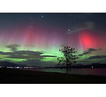 Red Auroras & the tree -II Photographic Print