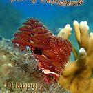Christmas Tree Worm - Card by Leon Heyns