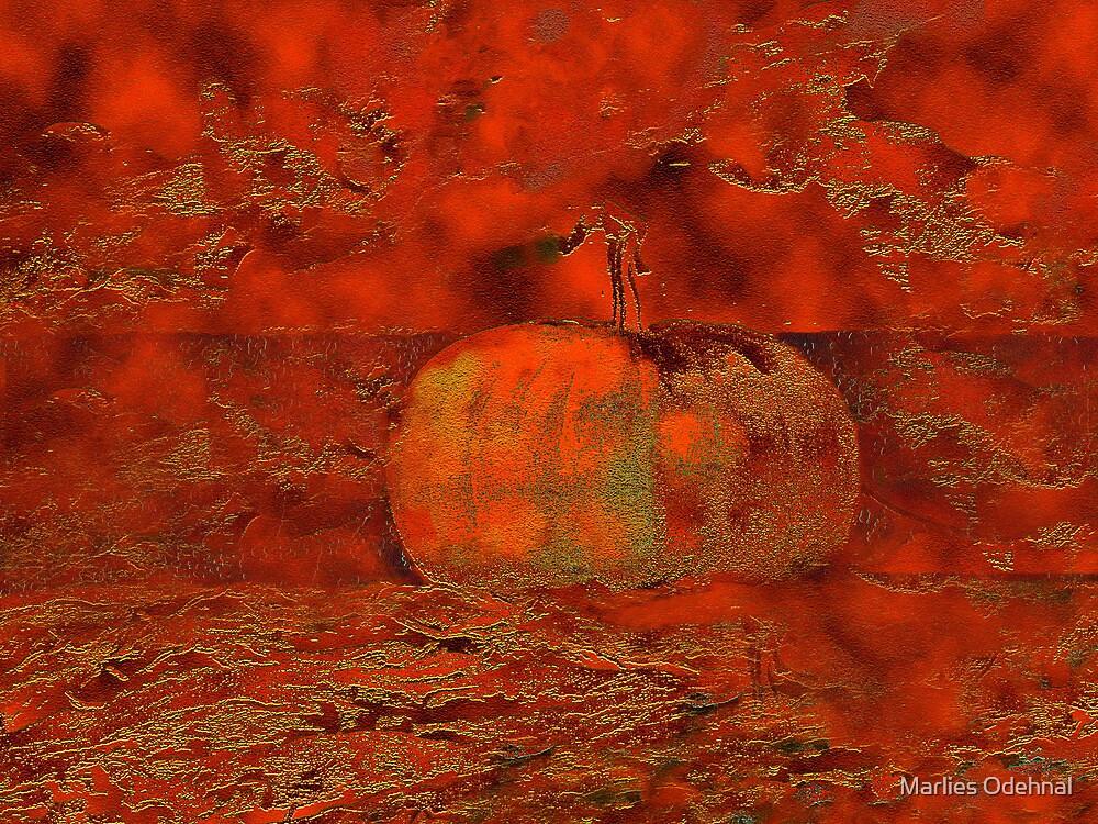 My favorite pumpkin by Marlies Odehnal