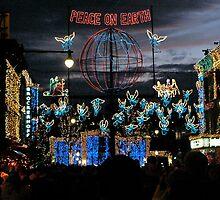 Disneyworld at Christmas - lights, lights and lights! by logonfire