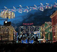 Christmas at Disneyworld - a land of lights by logonfire