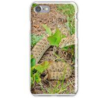 Rattlesnake iPhone Case/Skin