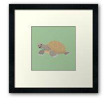 Happy Tortoise Framed Print
