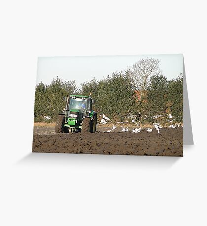 Ploughing on a frosty day Greeting Card
