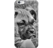 BOXER PUPPY iPhone Case/Skin