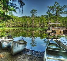 Canoes at Caddo Lake by tiptoncreative