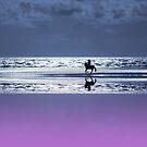 lone rider by shalisa
