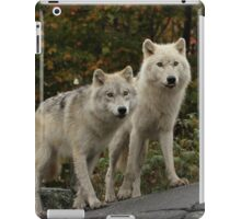 The guardians of the pack iPad Case/Skin