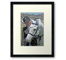 My Pony Calendar 2011 - Calendar Royal Hobart Show - Pic 2 Framed Print
