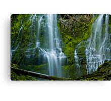 Proxy Falls 2 Canvas Print