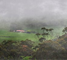 All Fogged In by JaninesWorld